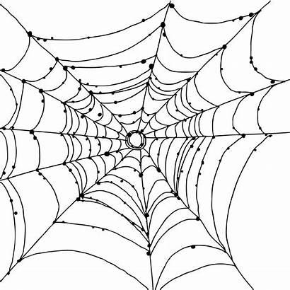 Spider Web Paper Freebie