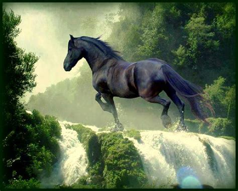horse backgrounds wallpapers cool animals horses awesome beauty flow river stallion hay wallpapersafari hd cute viewing prisa right pretty running