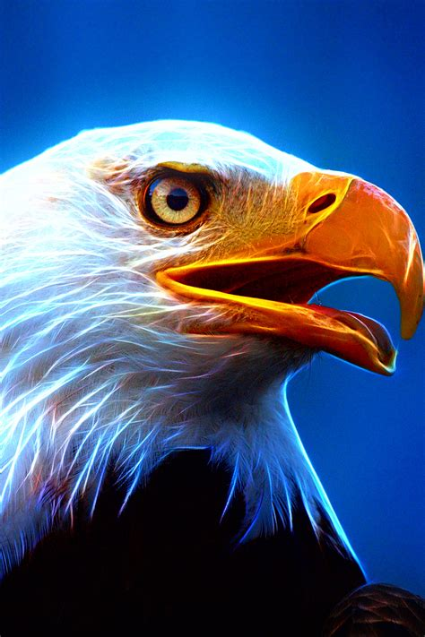 Free Eagle Wallpaper For Mobile Phones