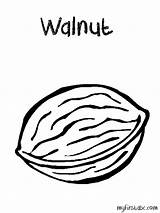 Walnut Coloring Clipart Nuts Clip Pages Drawing Printable Clipground Print Getcolorings Colorings Getdrawings Kid sketch template