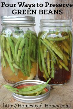 best way to freeze green beans 1000 images about best of homestead honey on pinterest