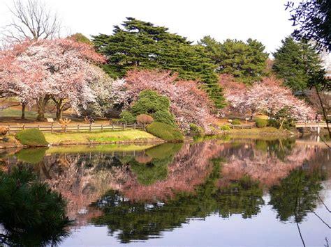 shinjuku gyoen national garden shinjuku gyoen national park the best places to visit in