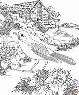 Garden Pages Gazebo Coloring Template sketch template