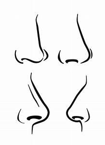 Dog Nose Drawing