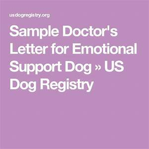 best 25 emotional support animal ideas on pinterest With psychiatrist letter for emotional support dog