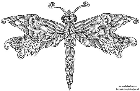 Dragonfly Coloring Pages Ayushseminarmahainfo