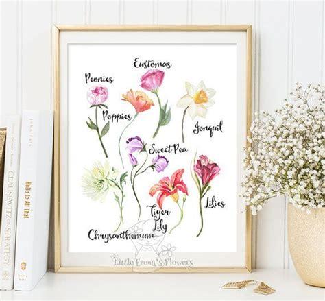 nursery floral wildflower