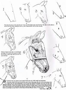 Beauty Things / How to Draw A Horse Head
