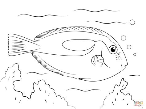 Tropical Fish Coloring Pages by Tropical Fish Coloring Pages Free Printable Pictures