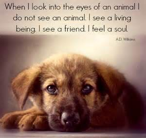 Quotes About Love Animals
