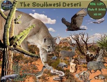 desert clip art animals plants photo clip art habitats