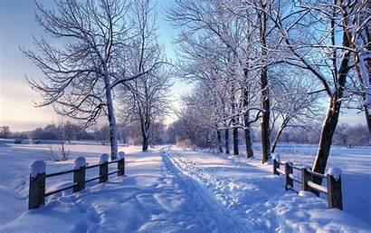 Winter Desktop Background Mac Popular Wallpapersafari
