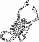 Scorpion Coloring Pages Scorpions Printable Animals Preschool Drawing Cartoon Desert Supercoloring Animal Giant Worksheets Getcoloringpages Crafts Silhouettes sketch template