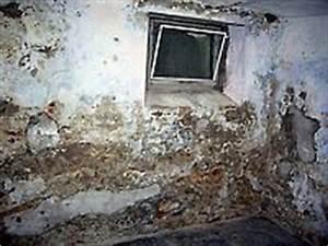 Feuchtigkeit Im Mauerwerk : mauerwerksanierung ~ Michelbontemps.com Haus und Dekorationen