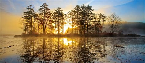 sunlight streams   pond petersham ma