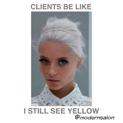 Meme Beauty Shop - 17 best ideas about hair humor on pinterest hairdressing quotes funny hair quotes and hair