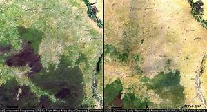 NASA Deforestation Photos: 7 Examples Of Our Disappearing ...