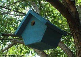 bird house plans beginner birdhouse designs patterns monograms stencils diy