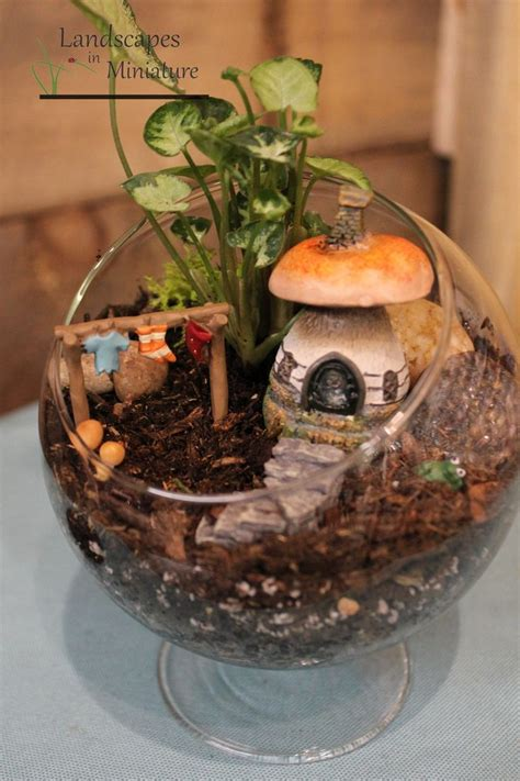 Best 25+ Indoor Fairy Gardens Ideas On Pinterest Kids