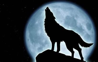 Wolf Drawing Moon Howling Getdrawings