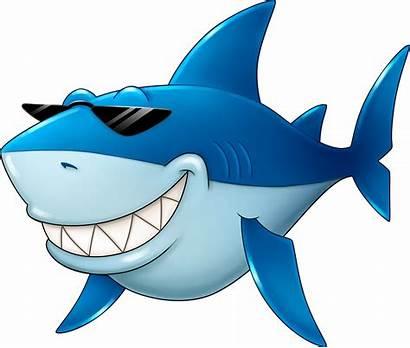 Fish Shark Cartoon Clipart Fin Transparent Clip