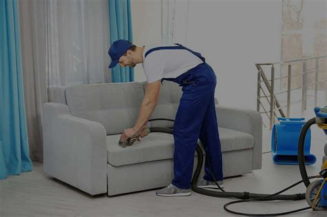 Best Carpet Cleaners In New York City 15% Off Blue Carpet Catmint Dalton Douglasville Ga Gallery Depew Oxy Clean Cleaning One Alexandria Mn Professional Raleigh Nc Wheeling Wv Carpets Newport Gwent
