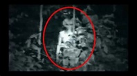 Top 14 Real Alien Proof in Earth Real Alien - Aliens are ...