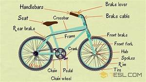 Bike Parts  Useful Parts Of A Bicycle In English With