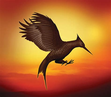 image gallery mockingjay bird