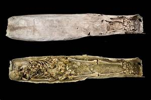 Richard III's mystery medieval grave neighbours were women ...