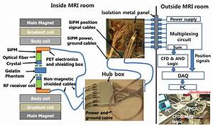Schematic Diagrams Of The Pet Insert Inside And Outside