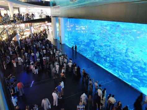 the dubai mall aquarium largest and best aquariums in the world 2017 top 10 aquariums world cities ranking bonus list