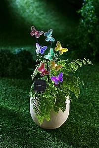 Gartendeko Auf Rechnung : solar gartendeko mariposa jetzt bei bestellen ~ Themetempest.com Abrechnung