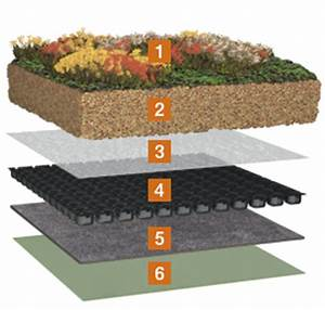 Extensive Dachbegrünung Aufbau : die druckbelastbare drainage extensive dachbegr nung von bauder ~ Whattoseeinmadrid.com Haus und Dekorationen