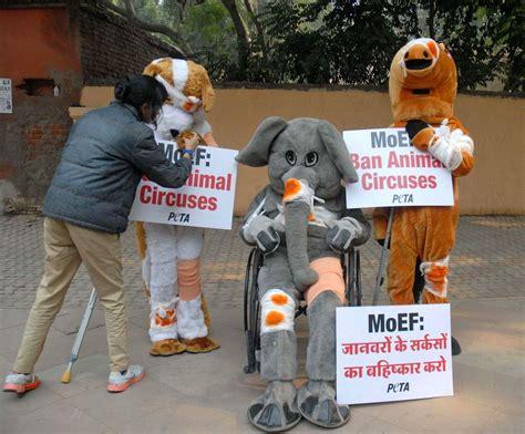 peta animals activists demonstration ethical treatment delhi demonstrate circuses ban demand jan