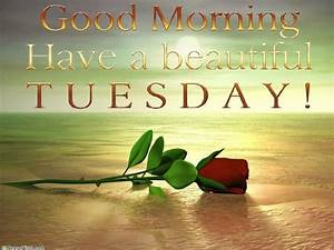 Happy Tuesday! Hey Everyone Smile Please! | Tuesday quotes ...  Tuesday