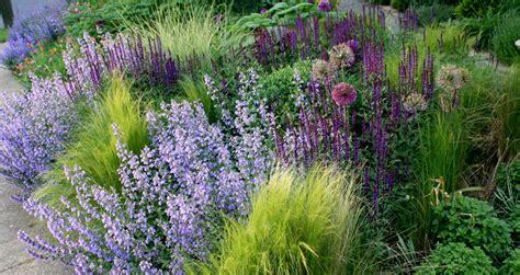 perennial shrubs gardens rant lawn alternative green gardens flowers plants gardens landscape foundation