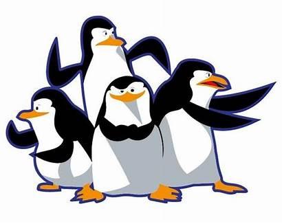 Madagascar Penguins Clip Cliparts Vector 3d Penguen