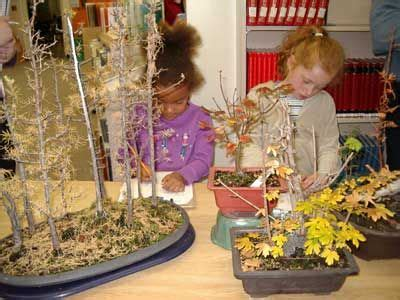 the project approach looking at trees for teachers 613   608c7b7135606aa92ed0973551e60074