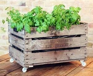 Jardiniere Sur Roulette : cultiver un potager l 39 ombre les l gumes et solutions adapt s ~ Farleysfitness.com Idées de Décoration