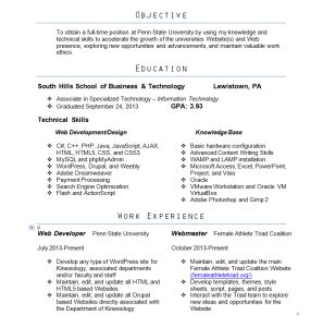 Best Webmaster Resume by New Resume Web Developer Designer Webmaster Extraordinaire