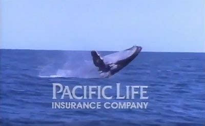 pacific life  anniversary  whale   ad