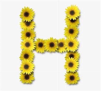 Sunflower Letter Sunflowers Monogram Clipart Cartoon Netclipart
