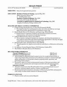 entry level resume summary resume badak With entry level nurse resume