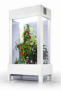 Serre Pour Plante : les objets connect s d di s aux plantes et au jardin ~ Premium-room.com Idées de Décoration