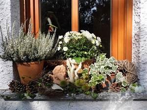 Fensterbank Außen Dekorieren : die besten 17 bilder zu deko vor der haust r auf pinterest g rten formschnittg rtnerei und shabby ~ Eleganceandgraceweddings.com Haus und Dekorationen
