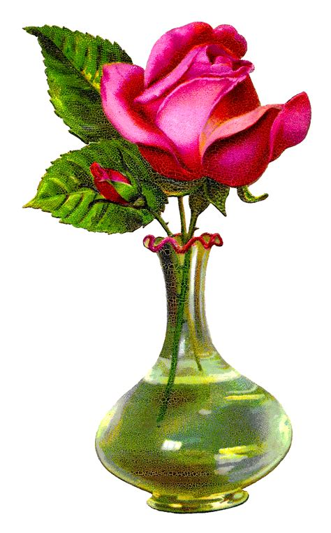 vase and flower antique images