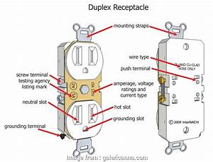 Diagram Three Prong Plug Wiring Diagram 110 Full Version Hd Quality Diagram 110 Lanwiring6 Pulitura2m It