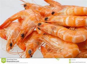 Fresh Shrimp Royalty Free Stock Image - Image: 34514016