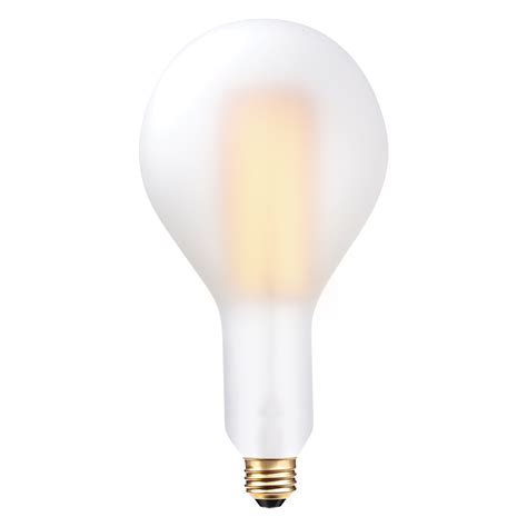 oversized frosted exterior vintage edison brina 60w